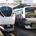 Photos: 水戸の定番2車輛