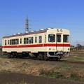 Photos: 右側に運転台のある キハ532 @関東鉄道竜ヶ崎線 竜ヶ崎~入地