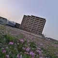 Photos: IMG_20180331_180626