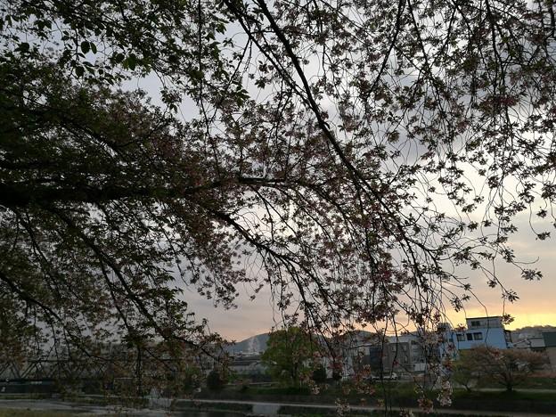 Photos: IMG_20180406_060232
