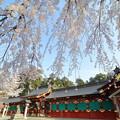 塩釜神社2