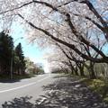 戸田記念墓地公園その23