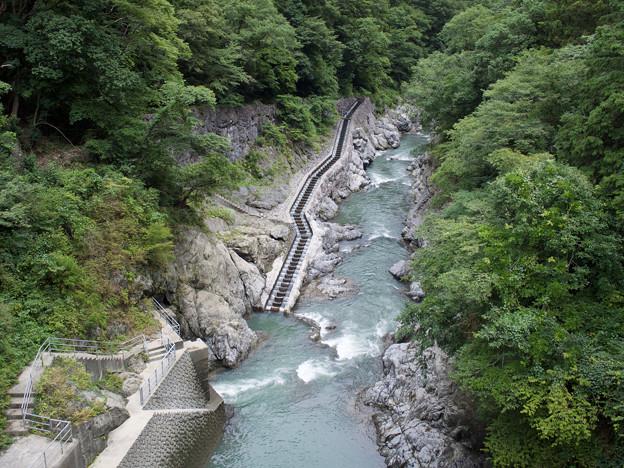 ダムの上から見た魚道