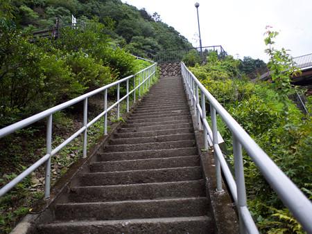 魚道への登り階段