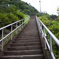 Photos: 魚道への登り階段