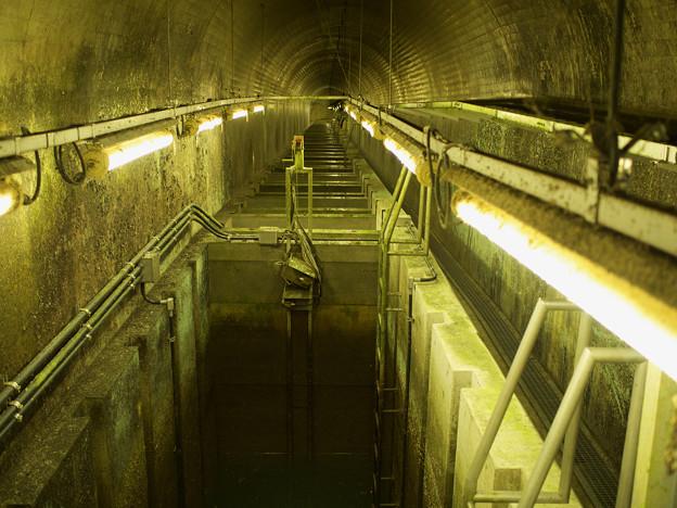 出口からトンネル魚道を見下ろす