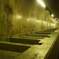 Photos: トンネル魚道