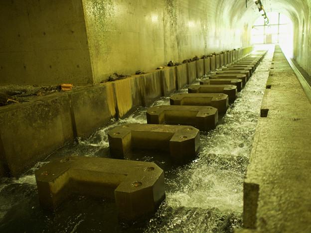 魚道地下区間