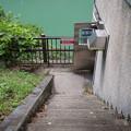 魚道出口階段から