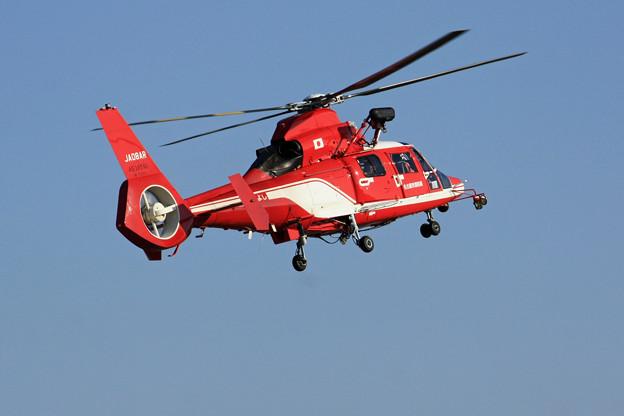 JA08AR 名古屋市消防航空隊 ひでよし エアバス・ヘリコプターズ AS365N3 Dauphin 2  IMG_8246_2