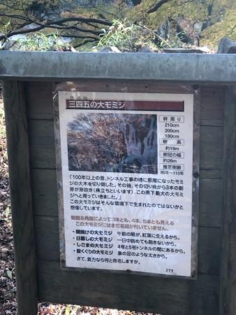 愛岐トンネル群 秋の特別公開 IMG_1476