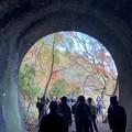Photos: 愛岐トンネル群 秋の特別公開 IMG_1469