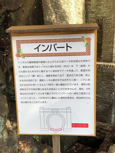愛岐トンネル群 秋の特別公開 鉄道遺構 インバート IMG_1510