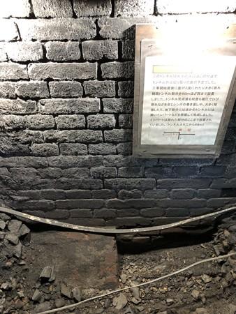愛岐トンネル群 秋の特別公開 鉄道遺構 インバート IMG_1516