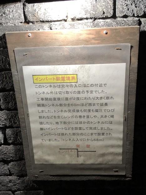 愛岐トンネル群 秋の特別公開 鉄道遺構 インバート IMG_1517