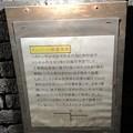 Photos: 愛岐トンネル群 秋の特別公開 鉄道遺構 インバート IMG_1517