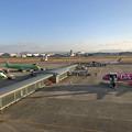 県営名古屋空港の朝 IMG_1574_2