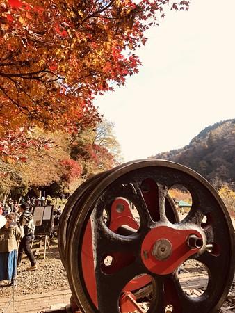 愛岐トンネル群 秋の特別公開 IMG_E1503