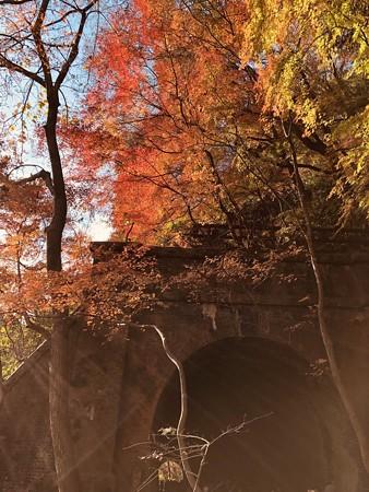 愛岐トンネル群 秋の特別公開 IMG_E1480