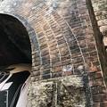 Photos: 愛岐トンネル 秋の特別公開 鉄道遺構 IMG_E1448