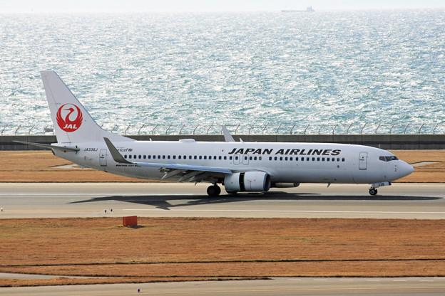 JAL日本航空 B737-846 JA336J IMG_8678_2