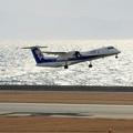 Photos: ANAウィングス ボンバルディア DHC8-Q400 JA852A IMG_8718_2