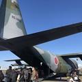 Photos: 航空自衛隊 第1輸送航空隊 第401飛行隊 C-130H 95-1083 IMG_2091