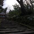 写真: 浄智寺02