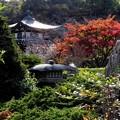 Photos: そうだ京都、行こう2018年春