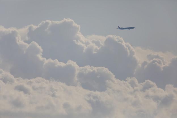 飛行機の日