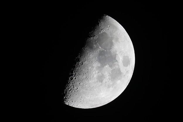 上弦のお月さま