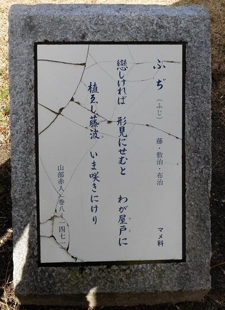 山部赤人歌碑(巻8ー1471・正道官衙遺跡公園内)