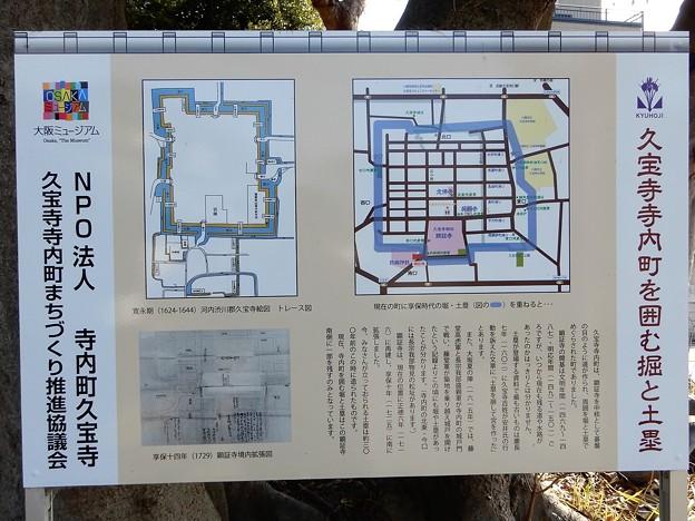 久宝寺寺内町 (1)