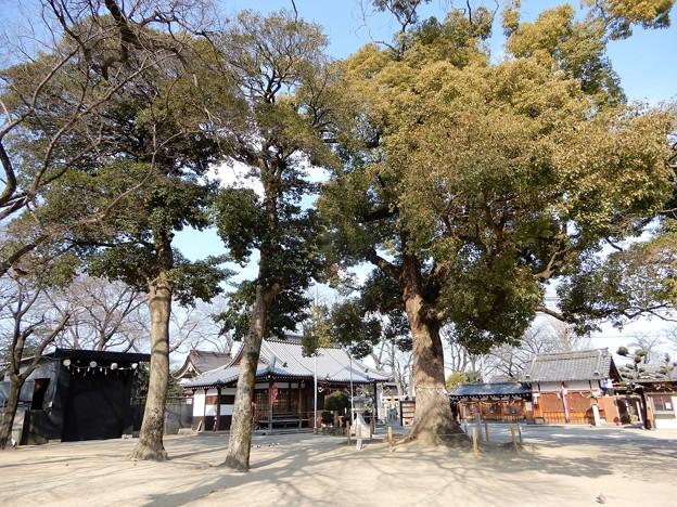 許麻神社 (2)