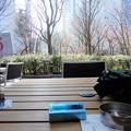 Photos: 里山の喫茶店・WILLER EXPRESS CAFE