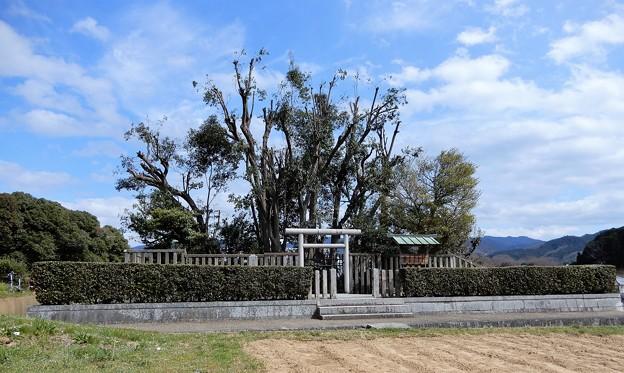吉備姫王墓 (1)