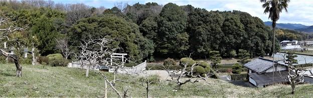 欽明天皇陵 (2)