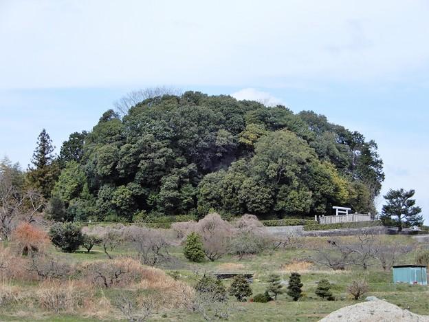 中島農園附近の眺め (2)・天武持統合葬陵