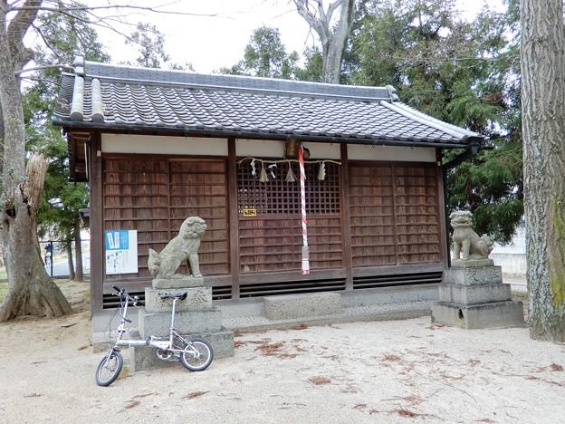 飛鳥川自転車道・菅原神社