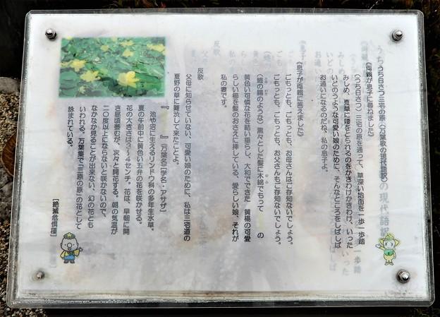 三宅の原の犬養万葉歌碑 (2)