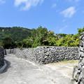 阿伝珊瑚石垣