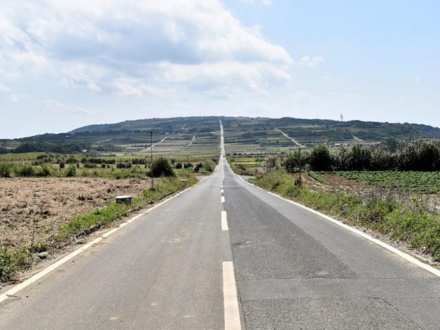 喜界島直線道路