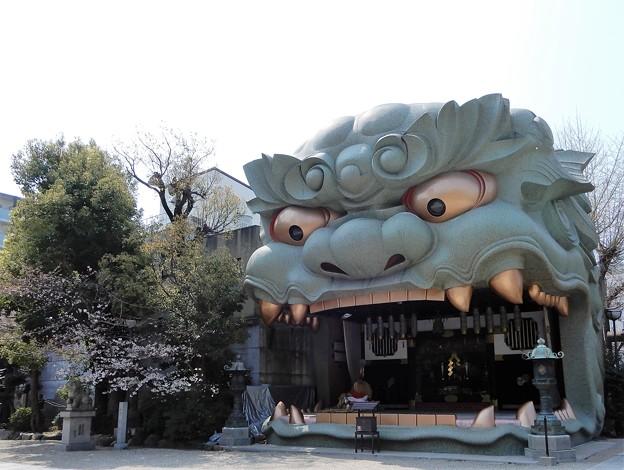写真: 難波八阪神社 (1)