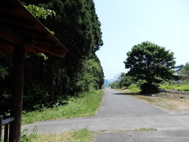 14山内付近 (1)