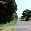 Photos: 14山内付近 (1)