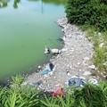 写真: 池に投棄されたモーターバイク (1)