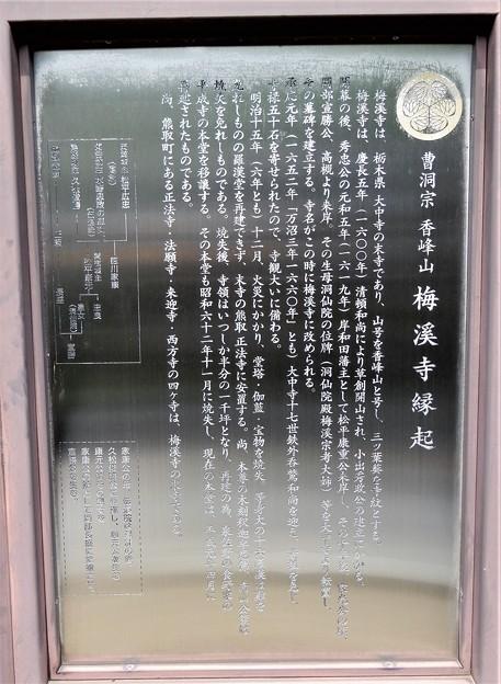 梅渓寺 (2)