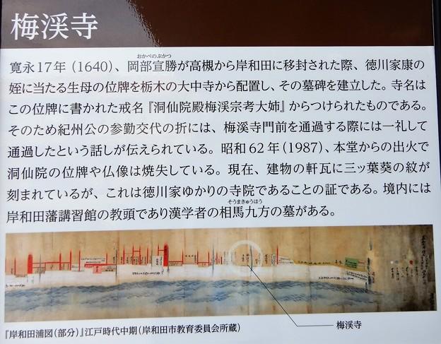 梅渓寺 (4)