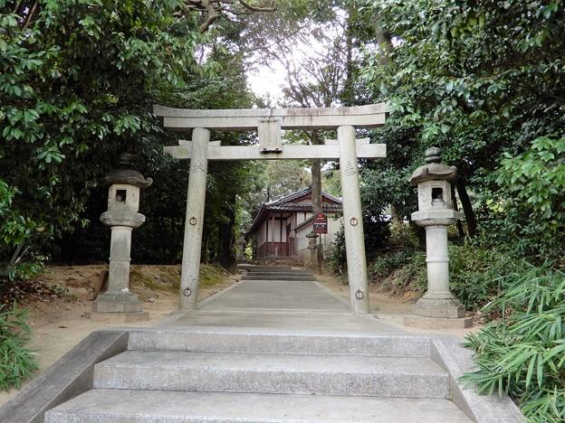 11宇奈多理坐高御魂神社 (1)