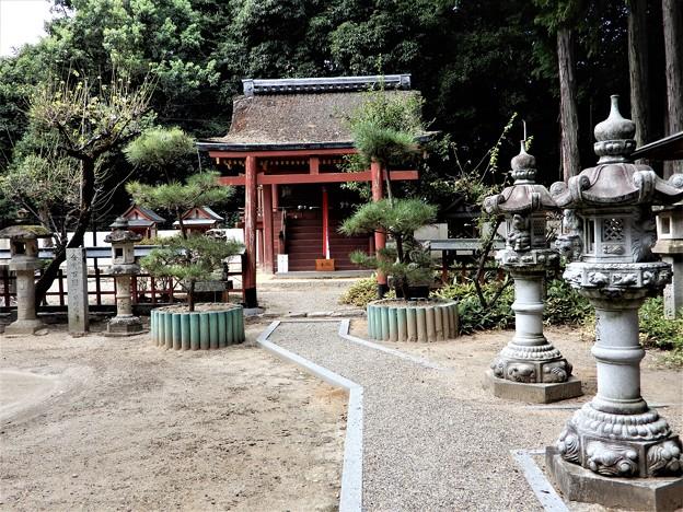 11宇奈多理坐高御魂神社 (3)
